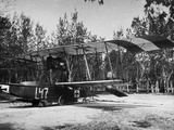 Austrian Seaplanes at War