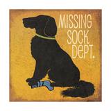 Missing Sock Department Giclée premium par Jo Moulton