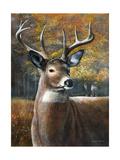 Deer Head II