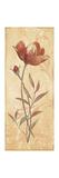 Terra Blooms I Reproduction d'art par Jo Moulton