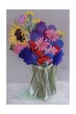 Jan's Flowers  2010