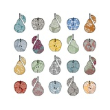 Apples and Pears, 2012 Reproduction d'art par Sarah Hough
