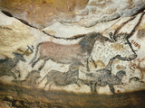 Cave of Lascaux  Great Hall  Left Wall: First Bull  Red Horse  Brown Horses  C 17 000 BC