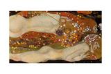 Water Serpents II, (Friends) 1904-07 Reproduction d'art par Gustav Klimt