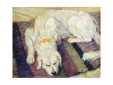 Reclining Dog (Portrait of a Dog)  1909