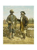 Two Elderly Cotton Pickers  1888