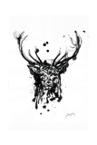 Inked Deer Reproduction d'art par James Grey
