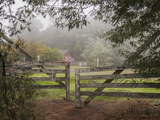Wooden Gate to Ranch (Fog in Morning  Oakland  CA)