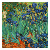 Iris (Détail)