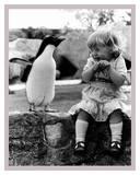 Penguin Show Off