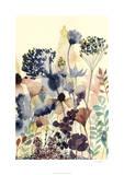 Sundry Blossoms II
