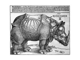 Rhinoceros, Print Given to Maximilian I by the King of Lisbon, 1515 Giclée par Albrecht Durer