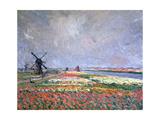 Tulip Fields Near Leiden  1886