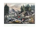 Gold Mining in California  1849