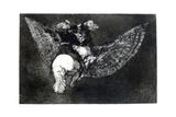 Winged Nonsense  1819-1823