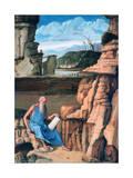 Saint Jerome Reading in a Landscape  C1480-1485