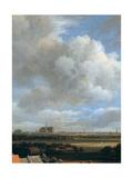 View of Haarlem  (Detail)  C1670