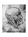Head of an Old Man  1913