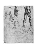 Nude Studies for 'The Battle of Anghiari  C1503-1505