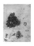 Studies for 'The Virgin and Child with St Anne and John the Baptist  1503