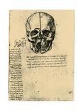 Anatomical Sketch of a Human Skull, C1472-1519 Giclée par Leonardo Da Vinci