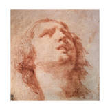 Head Study of a Woman Looking Up  17th Century