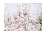 Willow Plantation  1514