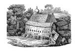 Bear Garden  Southwark  London  after its Third Rebuilding  1648