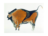 Bison  Copy of a Palaeolithic Cave Painting at Altamira  Northern Spain  1913