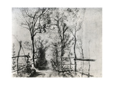 A Path Bordered by Trees  C1620-1625