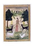 Todi Ragini, Ragamala Album, School of Rajasthan, 19th Century Giclée