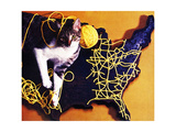 Chessie  Map Out the Tracks!