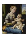 The Madonna of the Pinks (La Madonna Dei Garofan), Ca 1506-1507 Giclée par Raphael