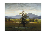Solitary Tree (Village Landscape in Morning Light)  1822