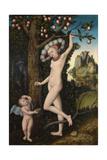 Cupid Complaining to Venus  C 1525