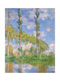 Poplars in the Sun  1891