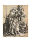 Bearded Saint with Walking Stick  C 1516