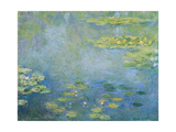 Water Lilies  C 1906
