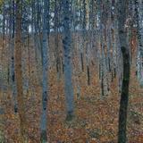 Beech Grove I, 1902 Giclée par Gustav Klimt