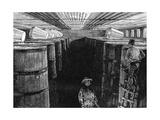 Fermenting Cellar in an American Brewery  1885