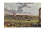 Newmarket Races  1909