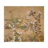 Flowering Plants in Autumn, 18th Century Giclée par Ogata Korin