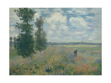 Poppy Fields Near Argenteuil  1875