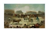 A Village Bullfight
