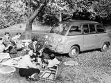 People Enjoying a Picnic Beside a 1956 Fiat 600 Multipla  (C1956)
