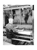 Weaving Irish Linen  Lurgan  Armagh  1936