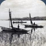 Fishing Boats Coming Home at Sunset  Near Yokohama  Japan  1904