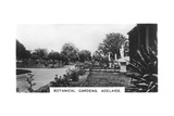 Botanical Gardens  Adelaide  Australia  1928