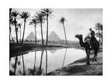 An Oasis Near Cairo, Egypt, C1920S Giclée