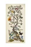 Chinoiserie Natura I Reproduction d'art par Naomi McCavitt